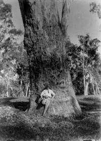 Paul Wenz à Nanima